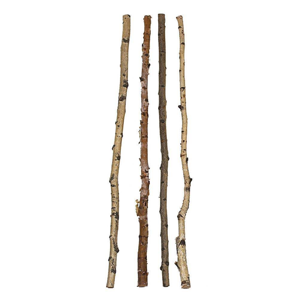Creative Co-op Wood Birch Branch 59""
