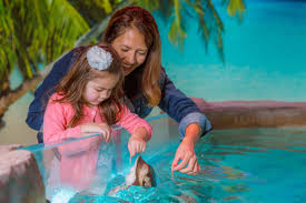 SeaQuest Interactive Aquarium Planned For River Ridge Mall In ... Kids And Sharks A Fun Morning At Seaquest Las Vegas Vintage Blue Under The Sea Interactive Aquarium Discount Tickets New Attraction Comes To Planned For River Ridge Mall In The Salt Project Things Do Planned Aquarium Folsom Faces Community Opposition Deal Now Valid All Summer Admission Tickets Or Ultimate Experience Package Certifikid Seaquests Problems Extend Beyond Discount Opening United Moms Network Quest Coupons Mk710 Deals