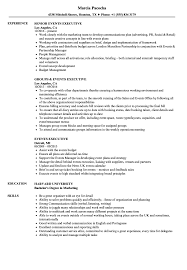 Download Events Executive Resume Sample As Image File