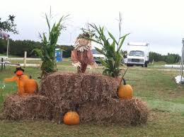Free Pumpkin Patch Charleston Sc by The 10 Best Pumpkin Patches In South Carolina In 2016