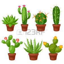 cactus dessin banque d images vecteurs et illustrations libres de