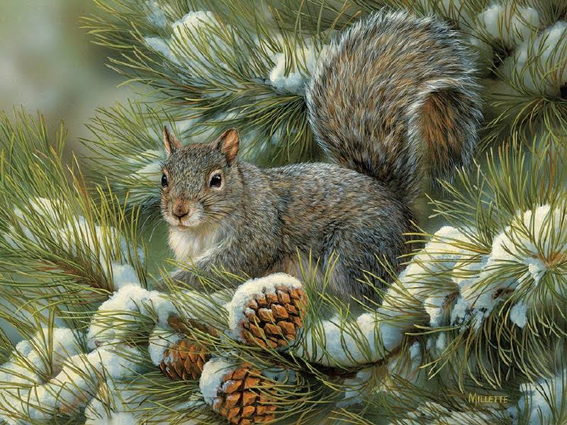 Cobble Hill Gray Squirrel Easy Handling Jigsaw Puzzles Set - 275pcs Set