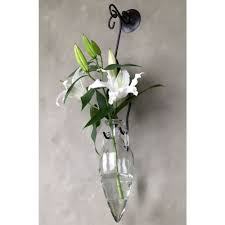 Hanging Amphora Glass Wall Vase