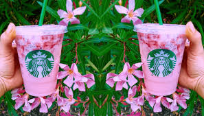 6 Starbucks Drinks For The Coffee Haters Pink Beverages