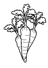 Free Printable Coloring Carrot Page 14 With Additional Pages For Kids Online