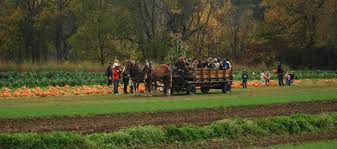 Nh Pumpkin Festival 2016 by 11th Annual Pumpkin Festival At Cedar Circle Farm Vermont Farms