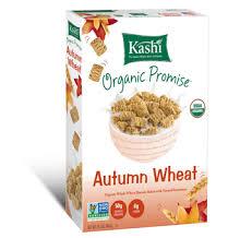 Kashi Pumpkin Spice Flax Discontinued by Kashi Heart To Heart Warm Cinnamon Oat Breakfast Cereal 12 4oz