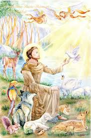 646 best st francis of assisi images on francis