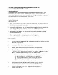 Film Invoice Template Invoices Photographer Resume Sample Freelance At Examples