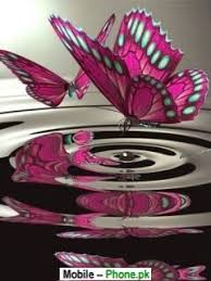 Pink Butterfly Wallpaper Nature Mobile