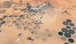 100 L Oasis Oasis De Koufra Dsert Du Sahara Ibye
