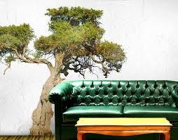 wandtattoo baum no 394 olivenbaum