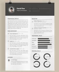 Modern Vertical Design Resume Template Download