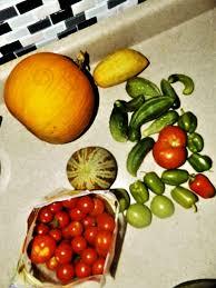 Fruitarian EARTHSHIP munity 30 Bananas a Day