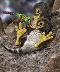 Baby Feathered Dinosaurs Balaur Bondoc By Psithyrus