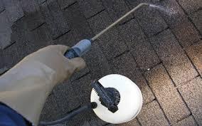 how to remove and prevent black algae stains on asphalt shingle