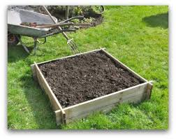 Raised Bed Ve able Garden Layout Ideas