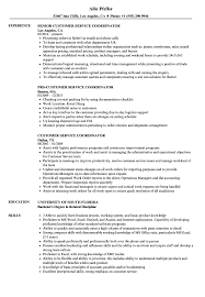 Download Customer Service Coordinator Resume Sample As Image File
