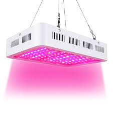 Uv Desk Lamp Vitamin D by Best 25 Full Spectrum Light Ideas On Pinterest Blue Light