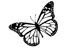 Free Butterfly Clipart Black And White Butterfly Black And White Monarch Butterfly Clipart Black And Clip