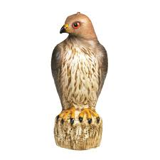Ace Hardware Christmas Trees by Bird B Gone Red Tailed Hawk Decoy Mmrth1 Lawn Ornaments Ace