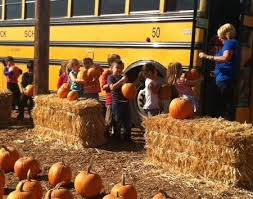 Wheatland California Pumpkin Patch by Find Corn Mazes In Turlock California Pumpkin Patch Turlock In