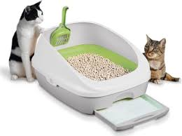 best cat litter boxes top 10 litter boxes of 2017 review