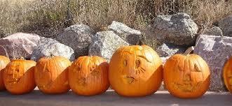 Pumpkin Patches Around Colorado Springs by In Colorado Springs