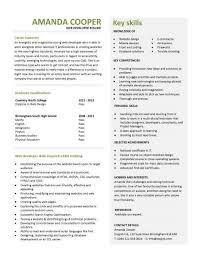 Entry Level Web Developer Resume Template Student Jobs