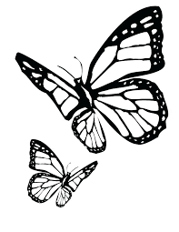 Swallowtail Butterfly Coloring Page Color Monarch Pages In