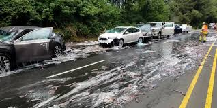 Slime Eels' Explode On Highway After Bizarre Traffic Accident ... Cc Outtake 2018 Honda Ridgeline The Pickup For Prius Owners Baldwinsville Used Toyota Vehicles For Sale East Wenatchee Hellabargain 2010 Cvt Red Sacramento Preowned 2016 C Auto Climate Control Hybrid Drive In How Jesus Helped Me Buy A University Cgregational United New Roads Leasing Fremont Ca 20 Cars And Trucks Pinterest At Prescott Holden Otorohanga Im Trading My A Cheap What Car Should I