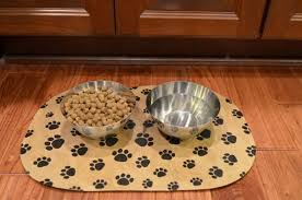 DIY pet food mat using a dollar store placemat Mod Podge Rocks