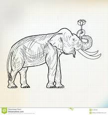 Monarch Elephant Flower Drawing Sketch Stand And Lotus Royalty Free Stock Photo