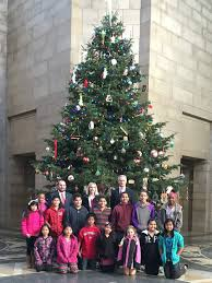 Colorado Springs Christmas Tree Permit 2014 by Newsletter District 26 News And Information