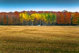 Pumpkin Patch Near Bayfield Wi by Take Your Rv On A Fall Colors Tour Unison Credit Union
