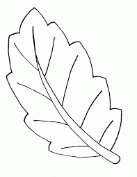 Leaves Shapes Colouring Pages