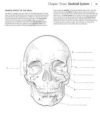 Anatomy Coloring Book Pages 11 Free Printable Body