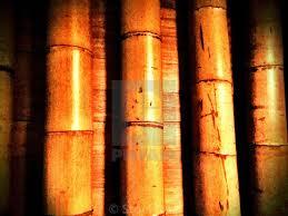 100 Bamboo Walls Tiki Hut Bamboo Walls License Download Or Print For 3100