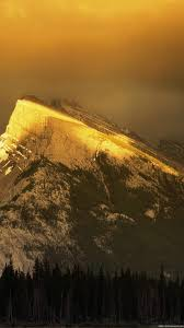 gold iphone wallpaper HD
