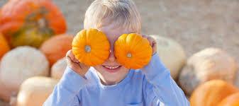 Nearest Pumpkin Patch Shop by 8 Best Pumpkin Patches In The Philadelphia Area Mommy Nearest