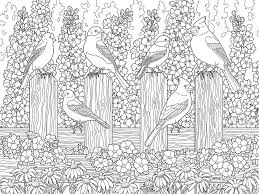 Birds In Flower Garden Coloring Page Painting By Crista Forest