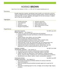 Apprentice Carpenter Resume Sample | Carpenter Resumes | LiveCareer How Do You Write A Career Summary For Your Resume Youtube 9 Examples Pdf 47 Cool Summaries On Rumes All About Best Of Statement In Example Marketing Now To Write Profile Writing Guide Rg The Death A Proper Information What Include In Hlights Section 89 Career Summary Example Rumesheets History Cleaning Realty Executives Mi Invoice And Resume Skills Examples Of Biggest Ctribution