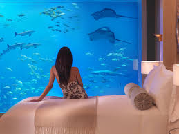 100 Conrad Maldives Underwater Swim With The Fishes At These HoneymoonWorthy Hotels