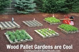 How To DIY Wood Pallet Garden 1