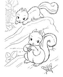 Playful Squirrels Coloring Pages