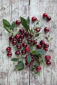 Aspirin For Christmas Tree Life by 546 Best Cherry Tree Lane Images On Pinterest Sweet Cherries