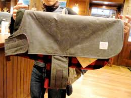 dog jackets archival blog