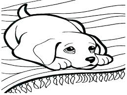 Cat Coloring Pages To Print Prime For Kids Dogs Dog And