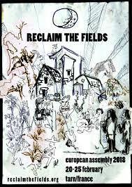 field dans ta chambre reclaim the fields
