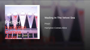 Bathtub Gin Phish Meaning by Wading In The Velvet Sea Youtube